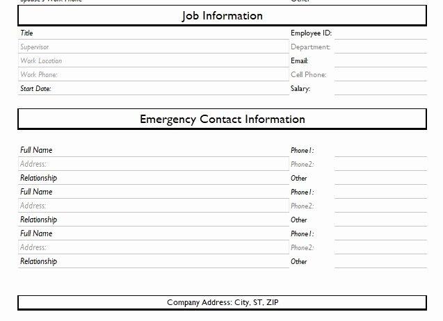 Employee Information form Template Luxury Record Of Employee Information form format Word and Excel