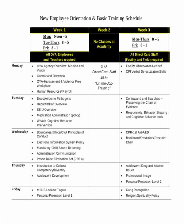 Employee Training Schedule Template Best Of 13 Employee Training Schedule Template Free Sample