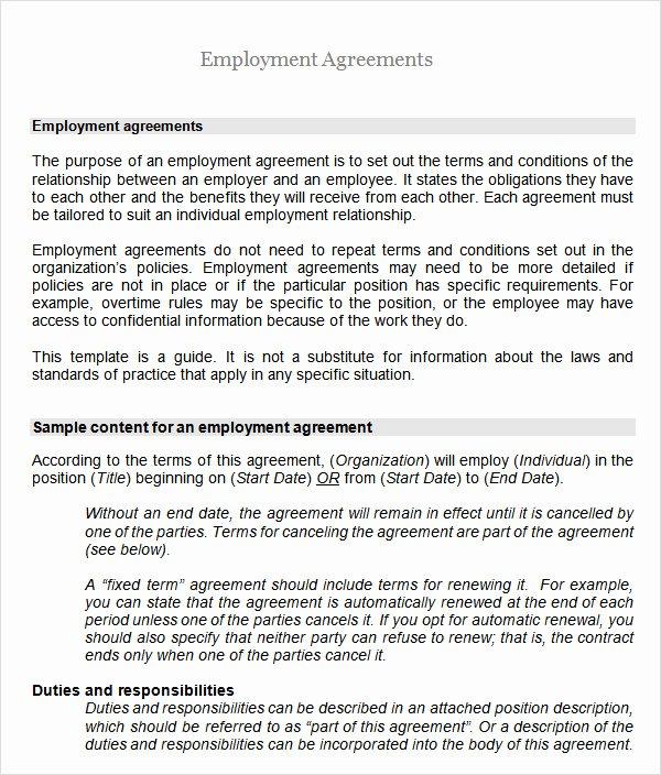 Employment Agreement Template Word Elegant Sample Employment Agreement 8 Free Documents Download