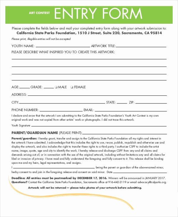 Entry form Template Word Best Of 7 Sample Contest forms