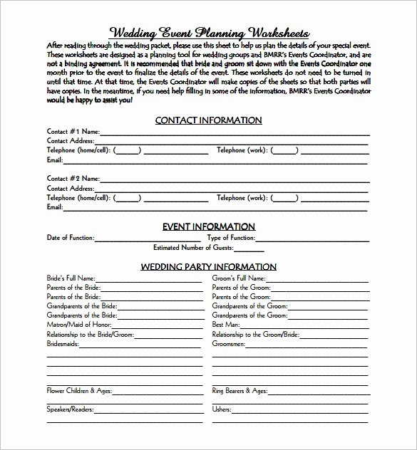 Event Planning form Template Awesome event Planning Template 9 Free Word Pdf Documents