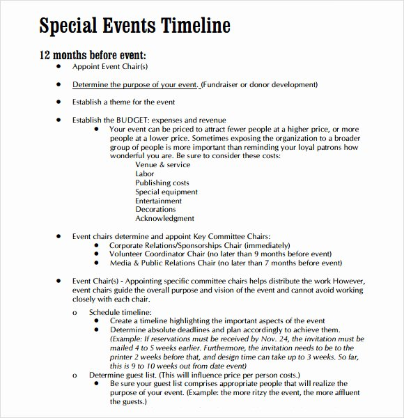 Event Planning Timeline Template Lovely 9 event Timeline Samples