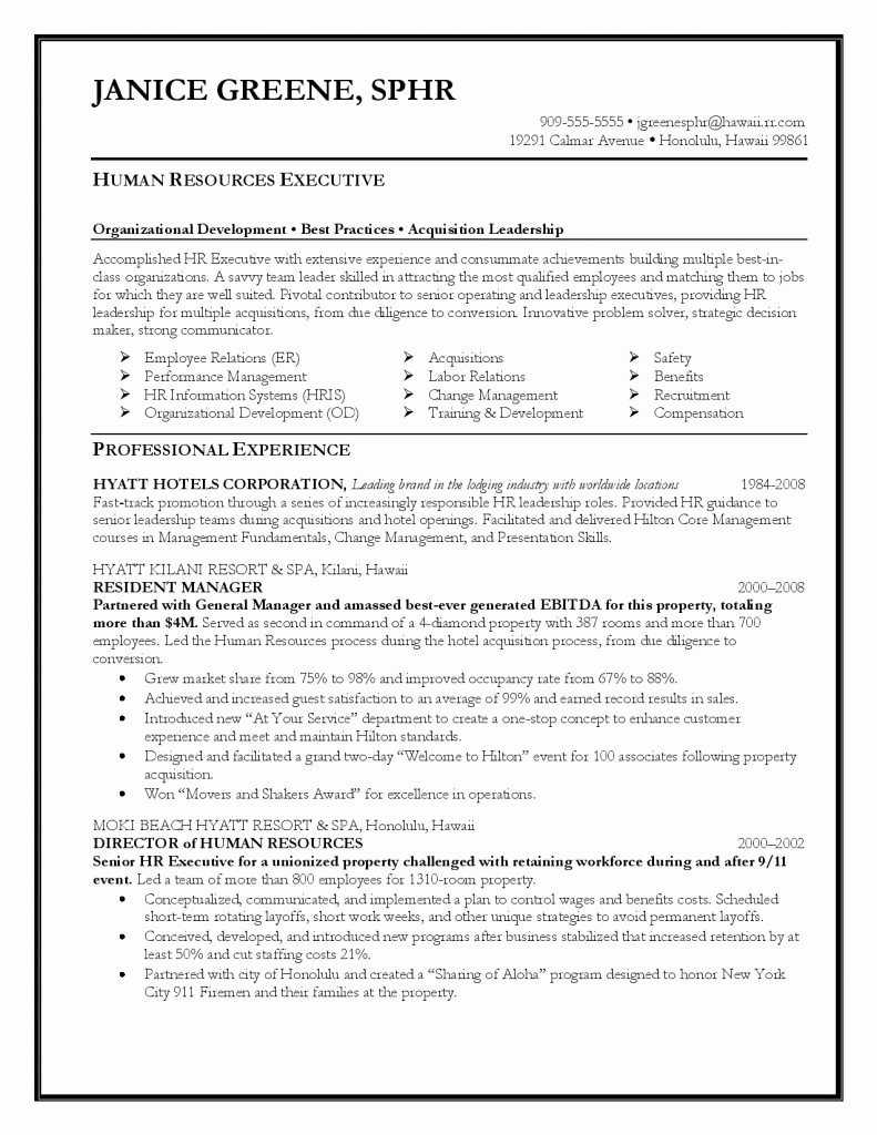Executive Director Resume Template Awesome Executive Resume Template 31 Free Word Pdf Indesign