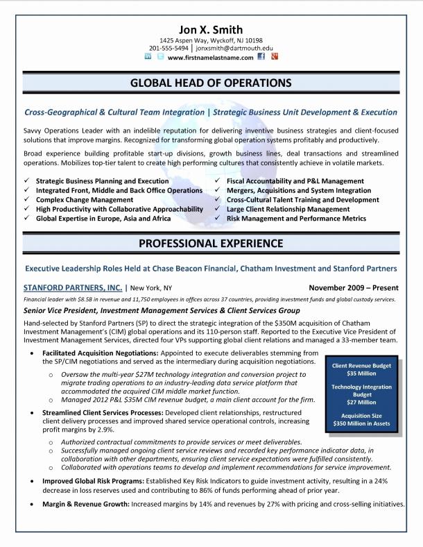 Executive Director Resume Template Beautiful Executive Resume Samples