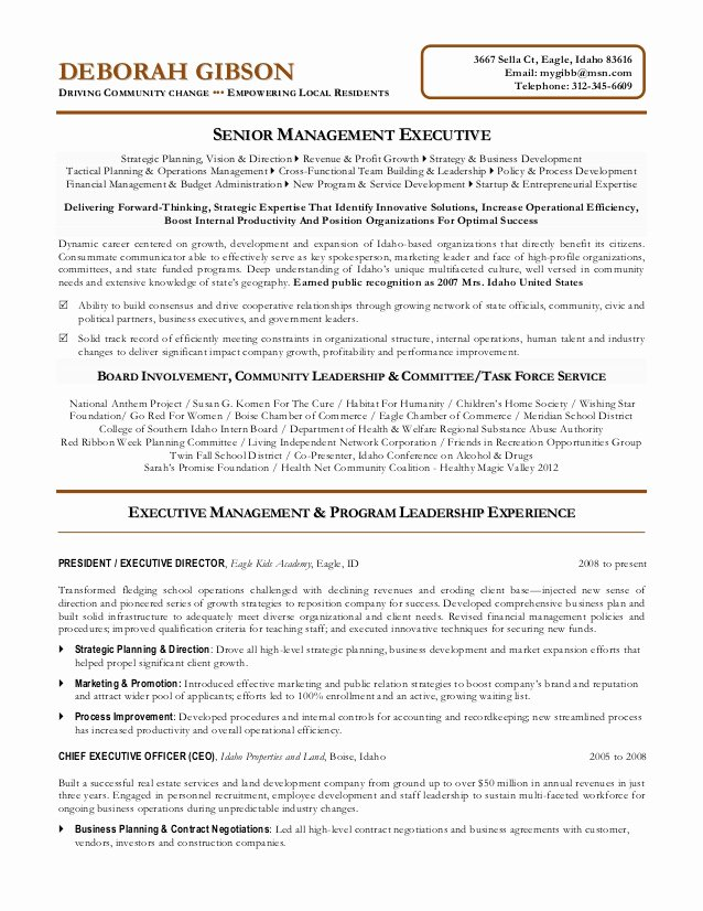 Executive Director Resume Template Beautiful Non Profit Executive Resume