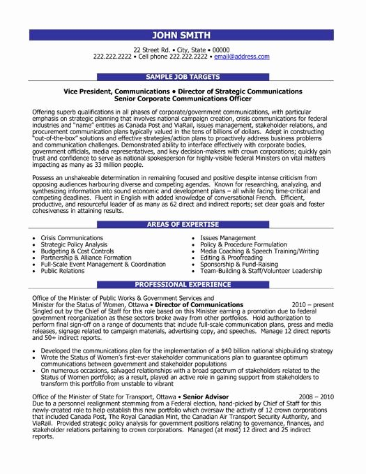 Executive Director Resume Template Elegant 10 Best Images About Best Executive Resume Templates