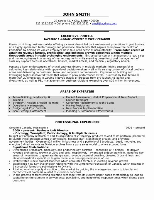 Executive Director Resume Template Luxury 48 Best Images About Best Executive Resume Templates
