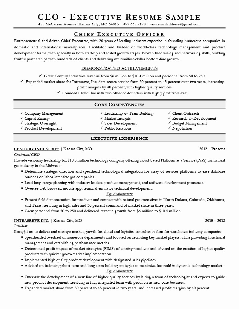 Executive Director Resume Template Luxury Executive Resume Examples & Writing Tips