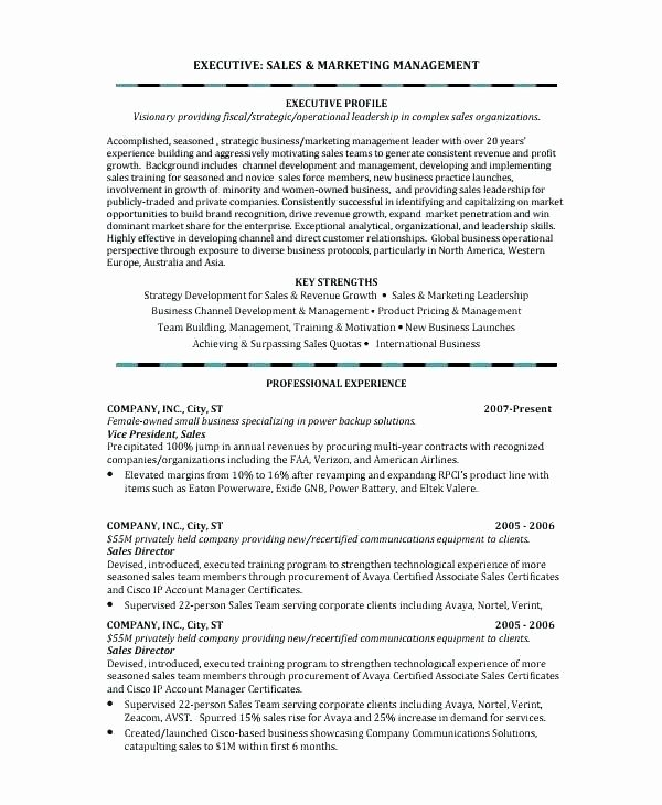 Executive Director Resume Template Luxury Executive Resume Examples – Letsdeliver