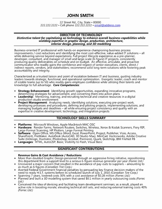 Executive Director Resume Template Luxury Sample Resume Vice Chairman