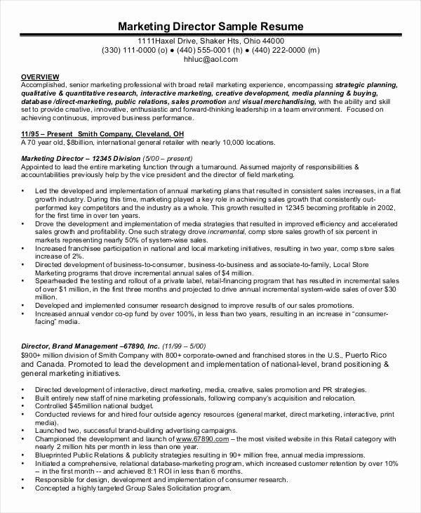 Executive Director Resume Template New 45 Executive Resume Templates Pdf Doc
