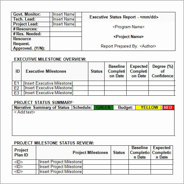 Executive Status Report Template Awesome Sample Status Report 12 Documents In Word Pdf Ppt