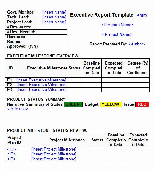 Executive Status Report Template Luxury 34 Report Templates Docs Word Pdf Pages