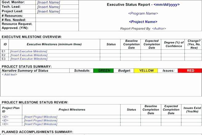 Executive Status Report Template Luxury Project Executive Brief Template Status Summary