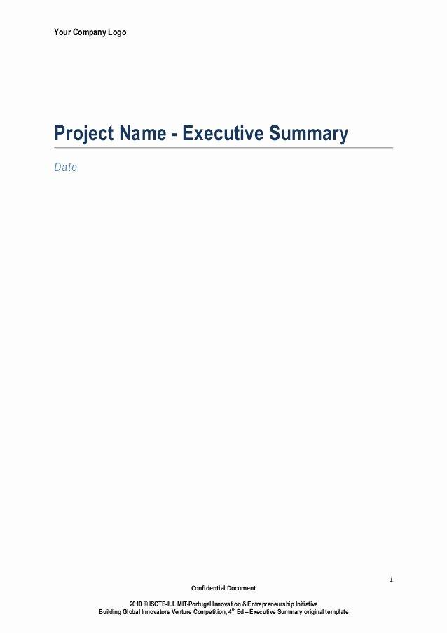 Executive Summary Powerpoint Template Lovely Executive Summary Template