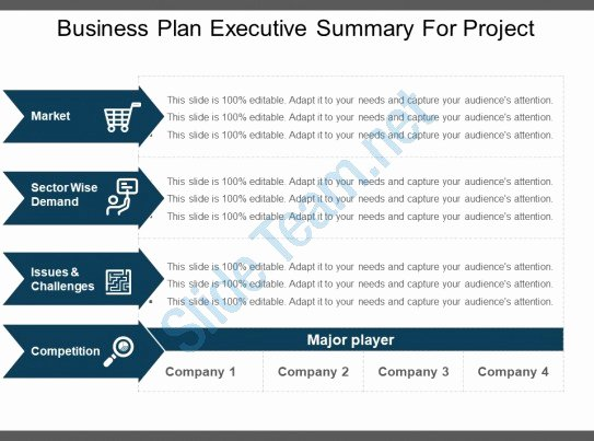 Executive Summary Powerpoint Template New Business Plan Executive Summary for Project Example Ppt