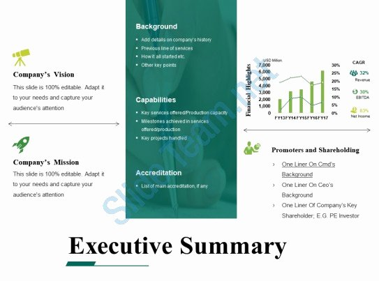 Executive Summary Powerpoint Template Unique Executive Summary Powerpoint Templates Microsoft