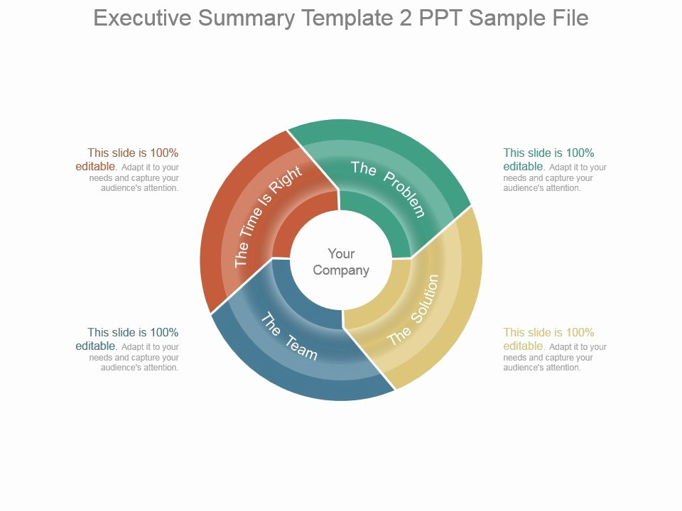 Executive Summary Powerpoint Template Unique Executive Summary Template 2 Ppt Sample File