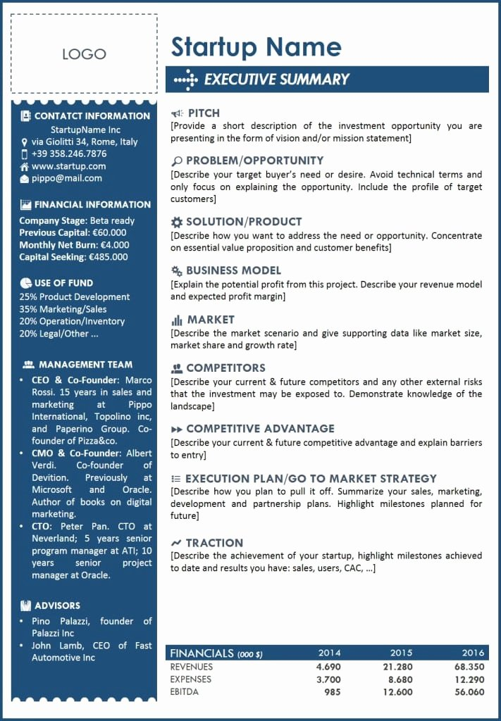 Executive Summary Template Pdf Elegant 5 Free Executive Summary Templates Excel Pdf formats