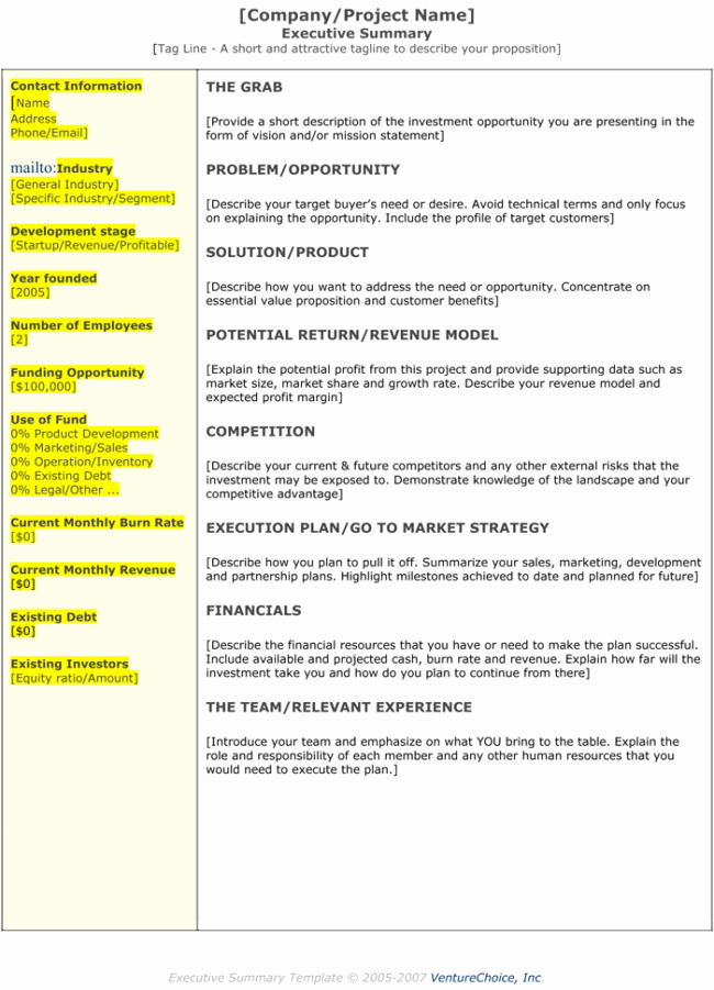 Executive Summary Template Pdf Inspirational 5 Executive Summary Templates for Word Pdf and Ppt