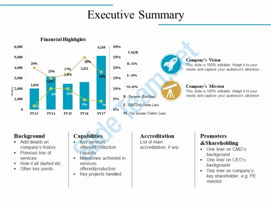 Executive Summary Template Ppt Awesome Executive Summary Powerpoint Slides Design