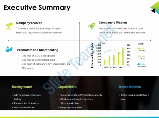 Executive Summary Template Ppt Best Of Executive Summary Ppt Presentation Examples