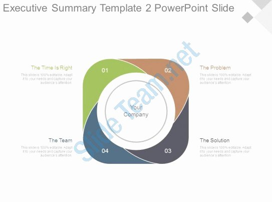 Executive Summary Template Ppt Best Of Executive Summary Template2 Powerpoint Slide
