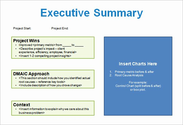 Executive Summary Template Ppt Elegant 5 Project Storyboard Templates Doc Pdf Ppt