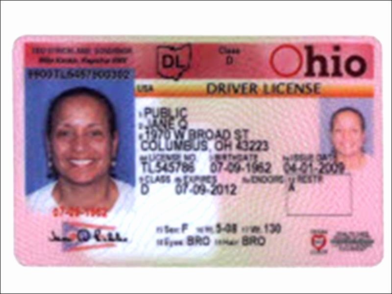 Fake Id Template Download Beautiful Florida Drivers License Template Download A53db27b0c50