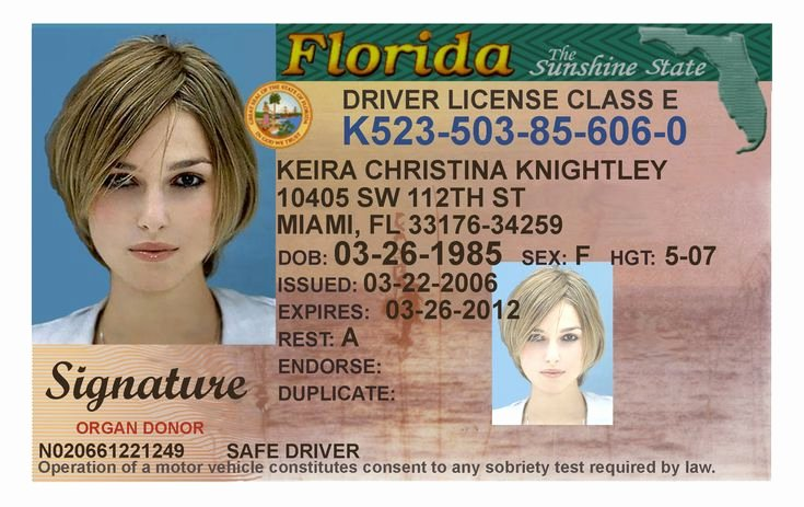 Fake Id Template Download Inspirational Here S A Sample Of A Fake Florida Id Card that S sold by A