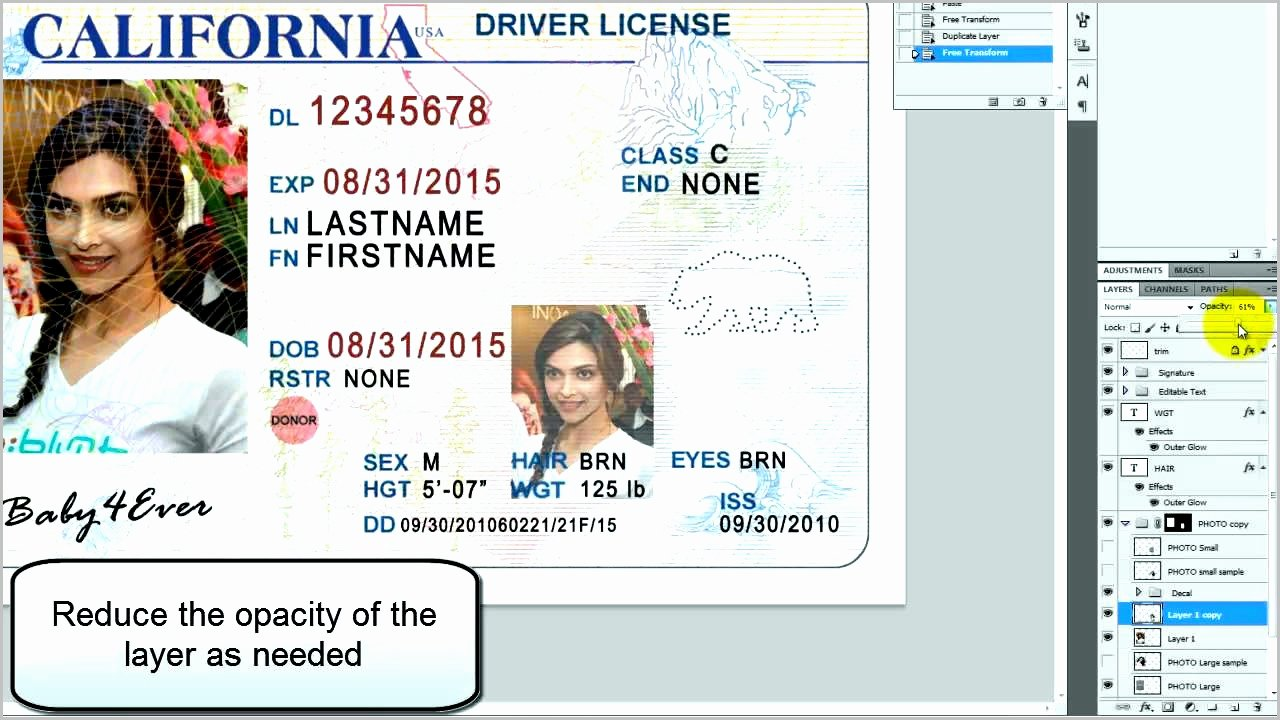 Fake Id Template Download Luxury License Template the Latest Whats Really Happening Fak On