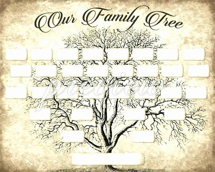 Family History Books Template Fresh Sample Family History Book Template Our Family Tree Book