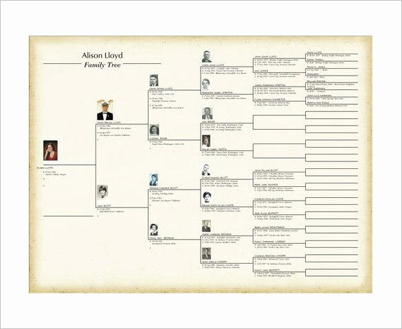 Family History Books Template New Family Tree Book Template – 9 Free Word Excel Pdf