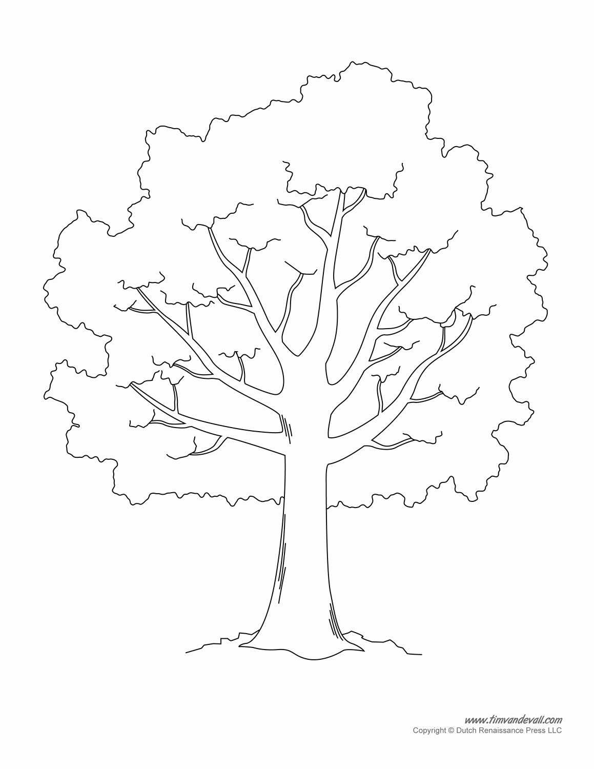 Family Tree Art Template Best Of Free Stencil A Tree Outline Download Free Clip Art