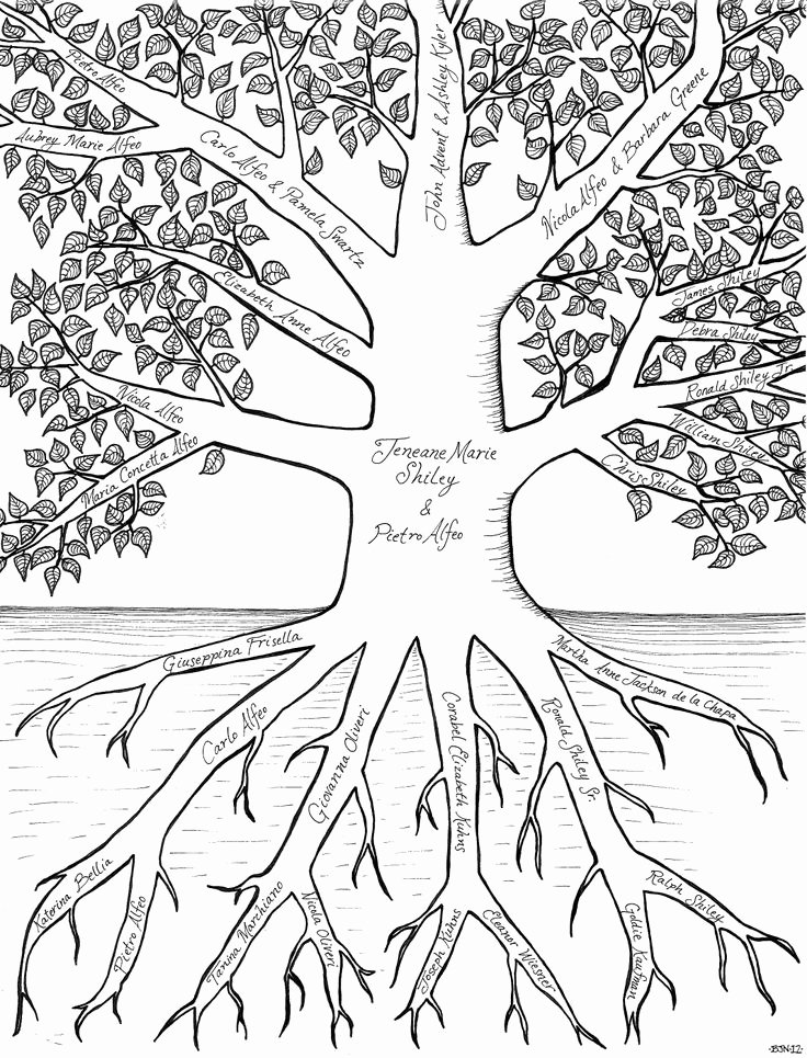 Family Tree Art Template Inspirational 24 Best Clip Art Family Tree Images On Pinterest