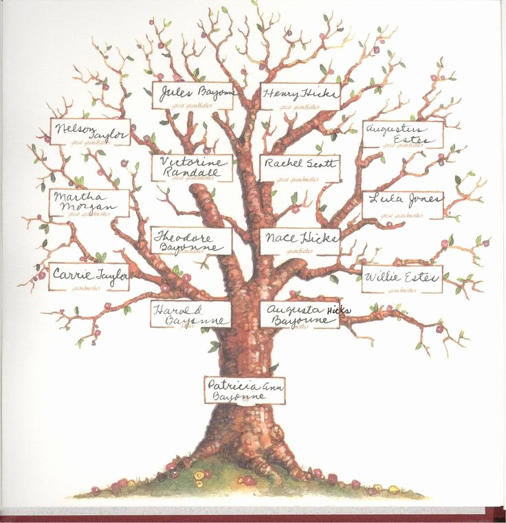 Family Tree Art Template Luxury Blank Family Tree 4 Generations Pat S Family Tree
