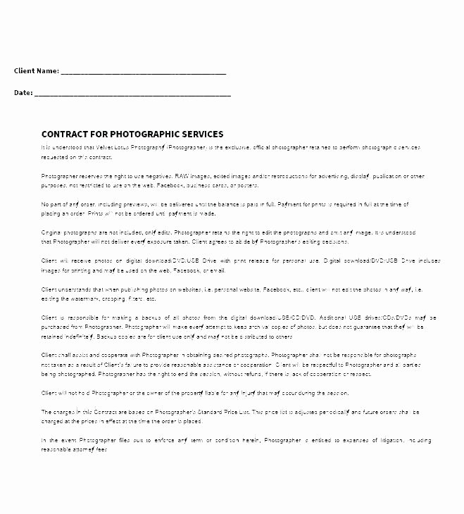 Film Producer Agreement Template New Co Production Agreement Template Contract Ideas Templa