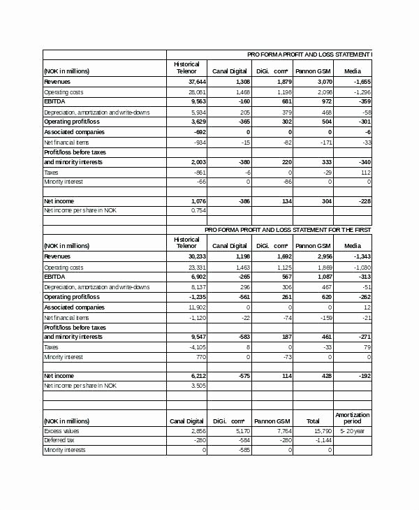 Financial Pro forma Template Luxury 15 Pro forma Financial Statements Example