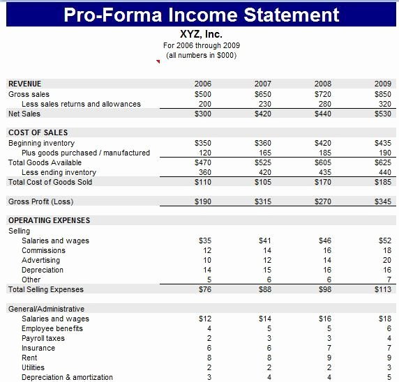 Financial Pro forma Template Luxury Pro forma Financial Statement Template