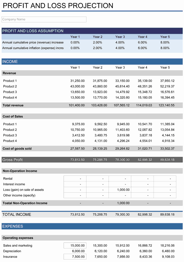 Financial Projection Template Excel Beautiful 5 Year Financial Plan