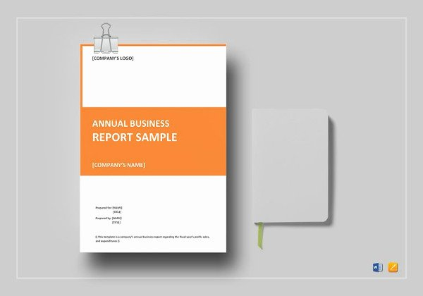 Financial Report Template Word Lovely 15 Business Report Examples Pdf Word Pages
