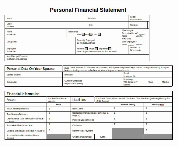 Financial Statement Template Word New 12 Sample Personal Financial Statements