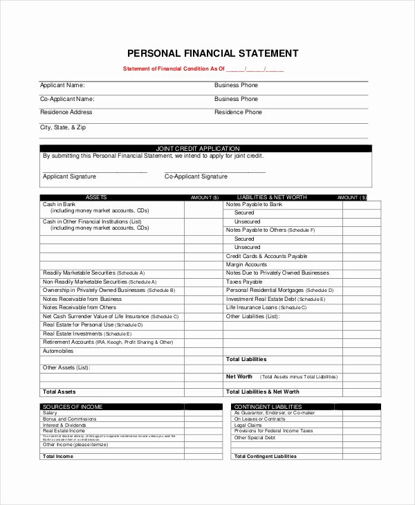 Financial Statements Template Pdf Best Of Personal Financial Statement form 7 Free Pdf Word