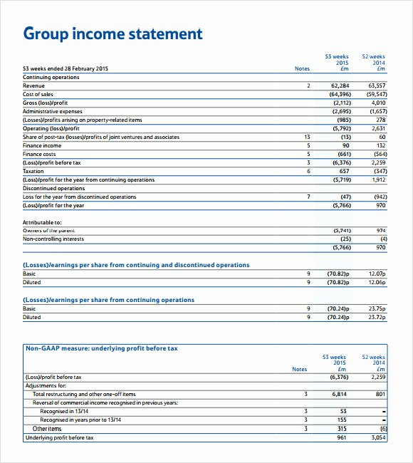 Financial Statements Template Pdf Fresh 10 Sample In E Statements