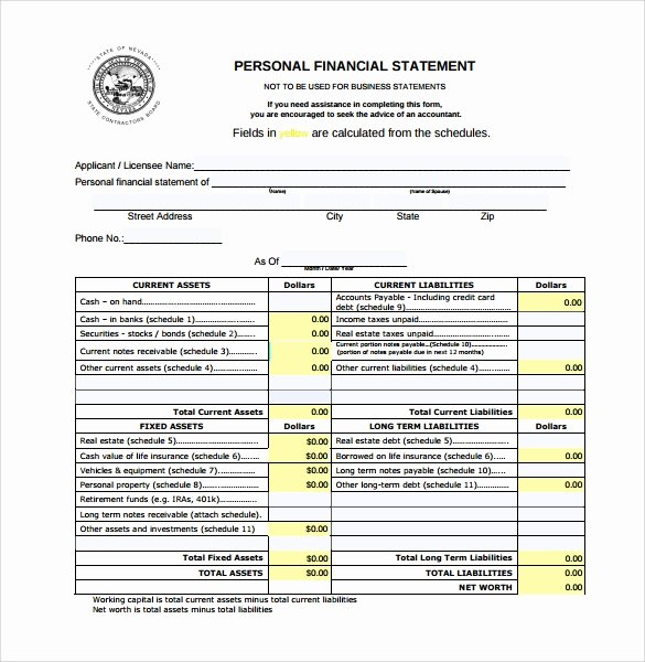 Financial Statements Template Pdf Lovely 15 Personal Financial Statement form – Free Samples