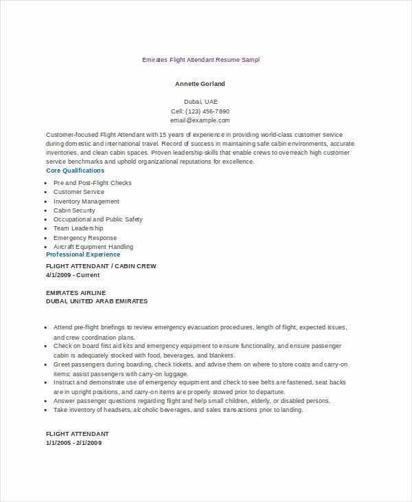Flight attendant Resume Template Elegant 6 Flight attendant Resume Templates Pdf Doc