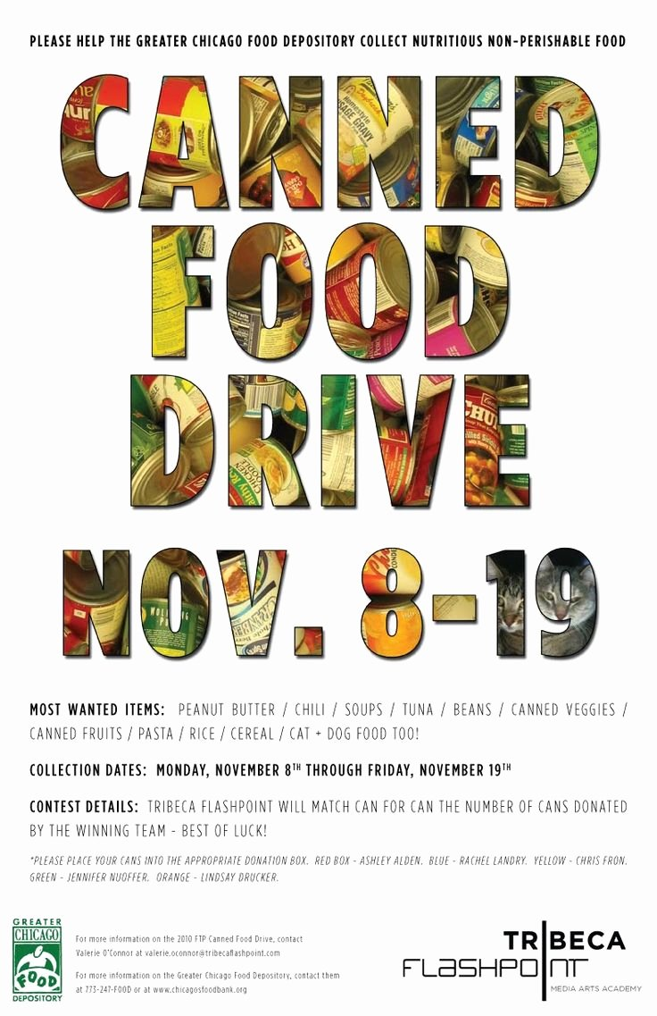 Food Drive Flyer Template Inspirational 8 Best Food Drive Images On Pinterest