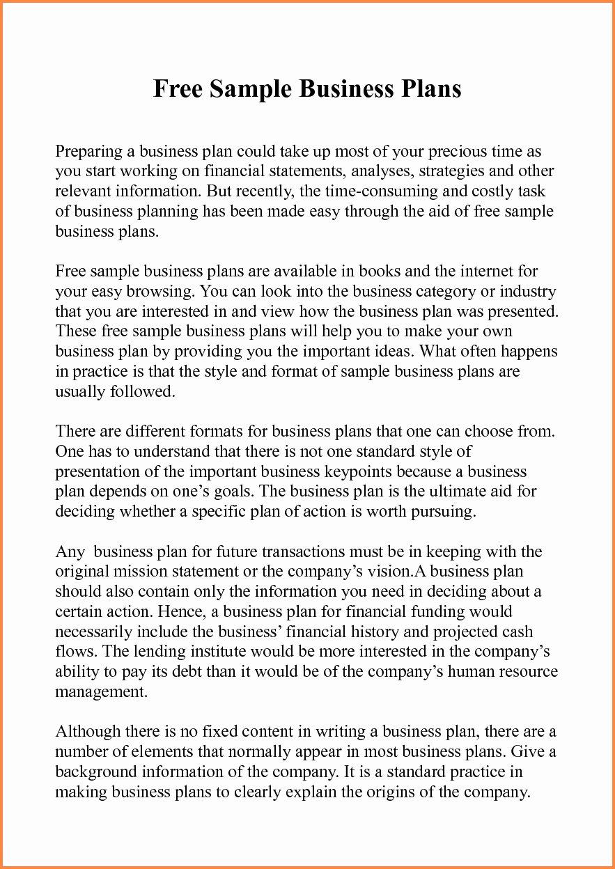 or franchise business plan sample pdf 4