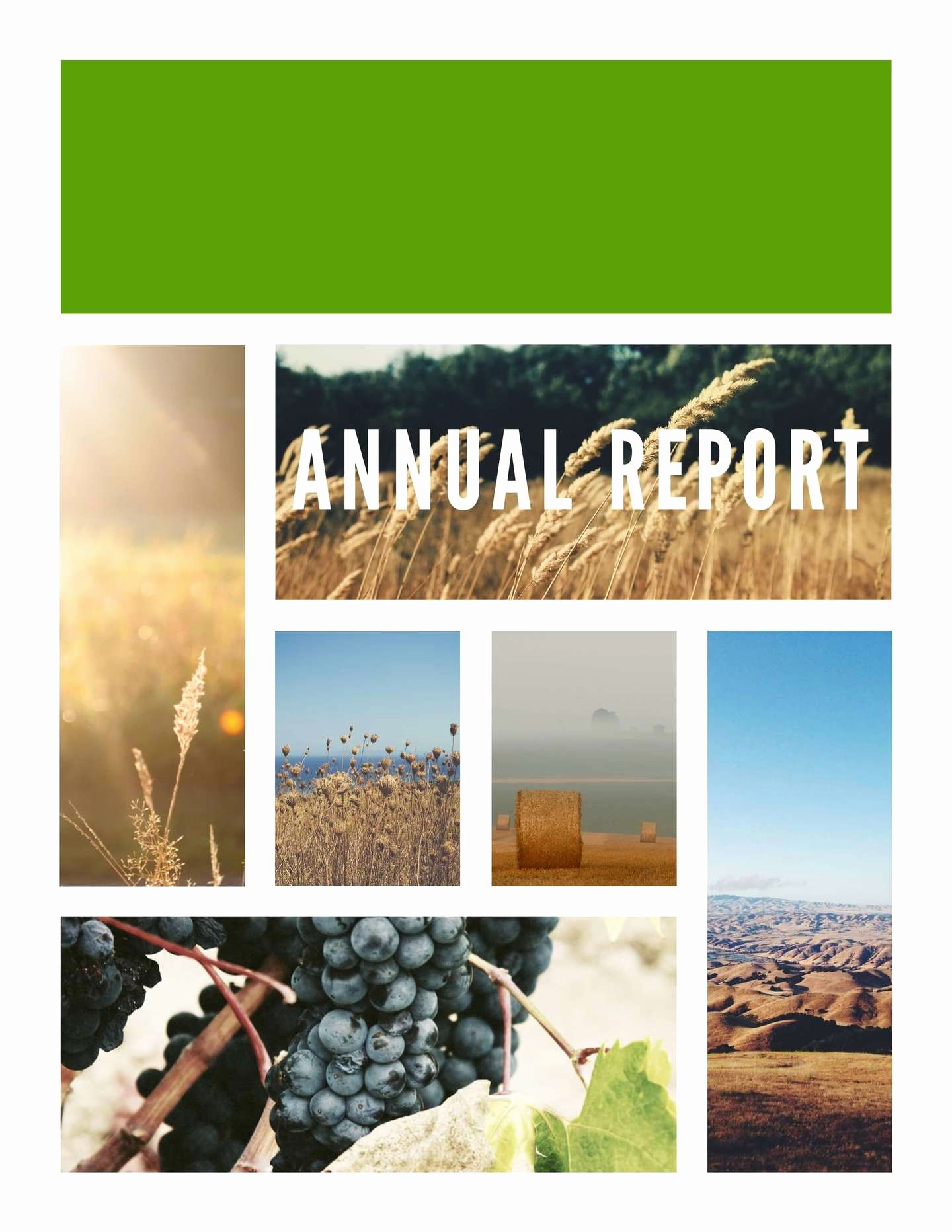 Free Annual Report Template Best Of Free Annual Report Templates & Examples [6 Free Templates]