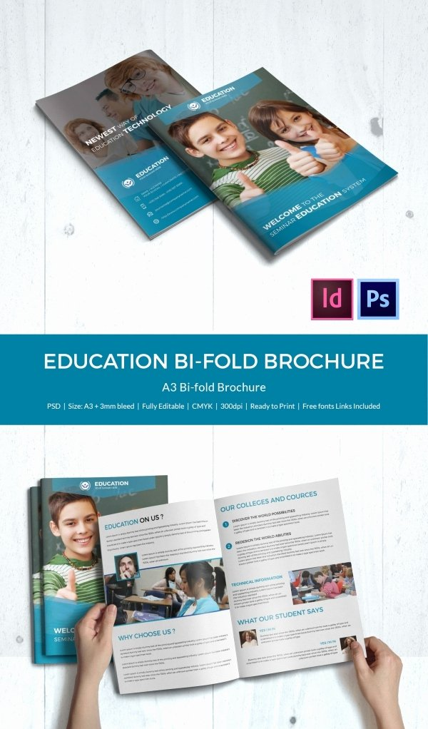 Free Bifold Brochure Template New Education Brochure Template 43 Free Psd Eps Indesign